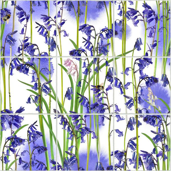 Bluebells_repeat_V